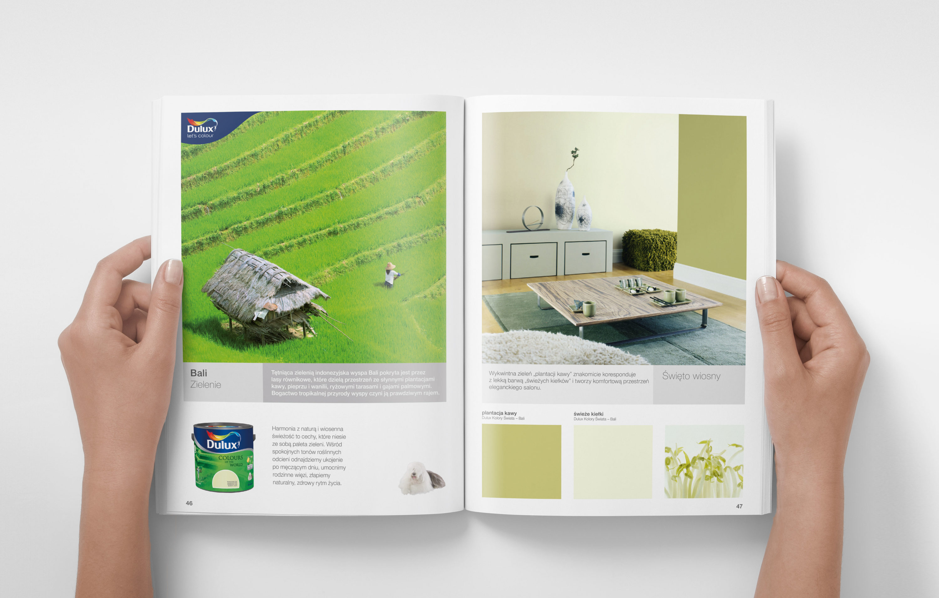 dulux_2012_hold